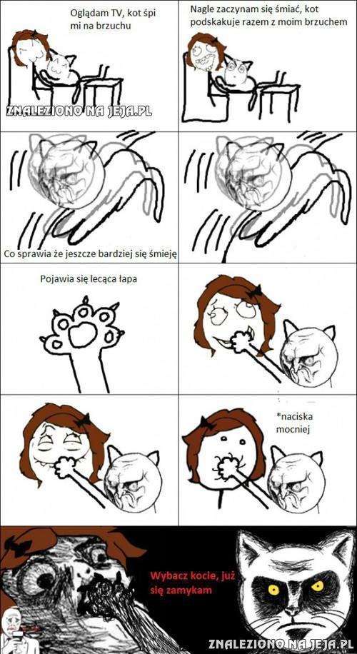 Z kotem nie ma żartów