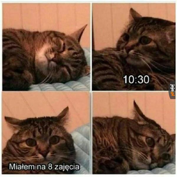 Znowu zaspałem!