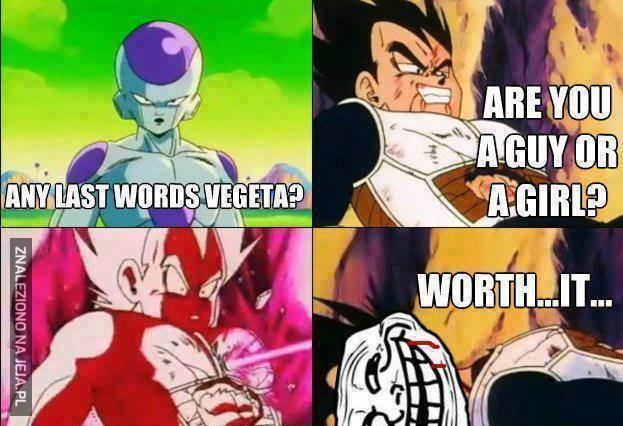 Ostatnie słowa Vegety