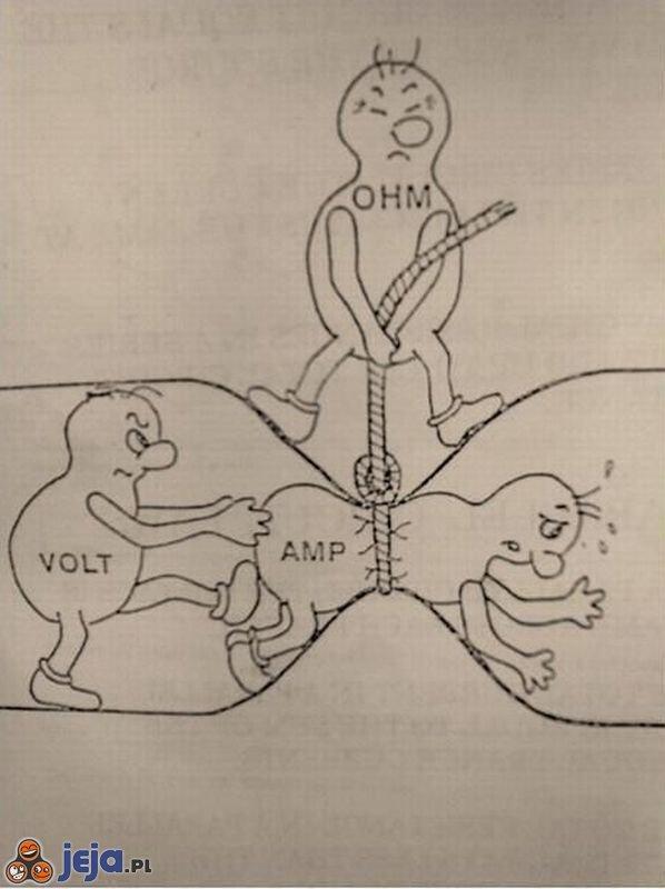 W świecie elektronika