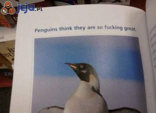 Co pingwiny myślą o sobie