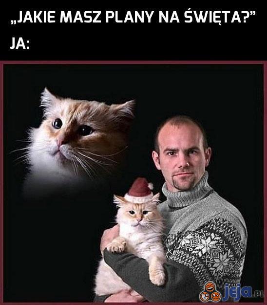Święta zaplanowane
