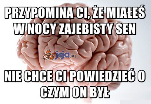 Mózgu, dlaczego mi to robisz?!