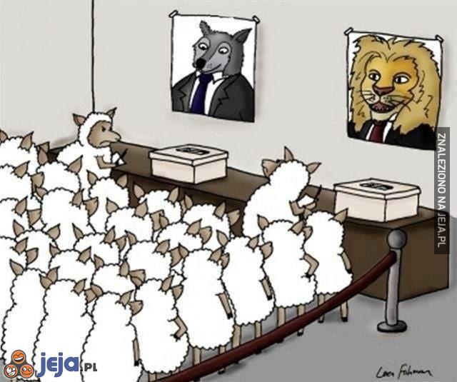 A wybory wciąż takie same