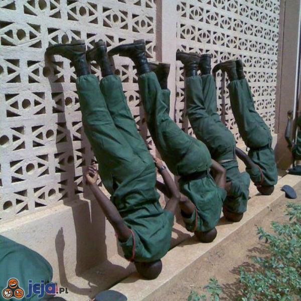 Żołnierze stają na głowach żeby pułkownik był zadowolony