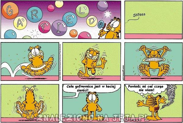 Wygłupy Garfielda