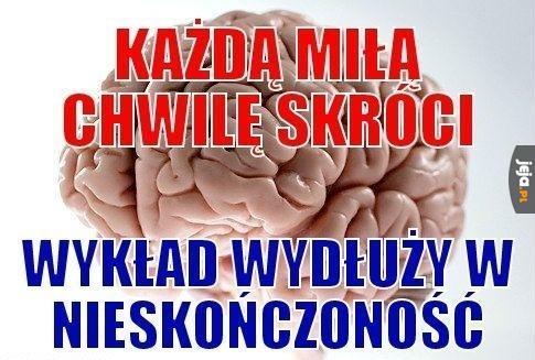 Mózg to skończony drań