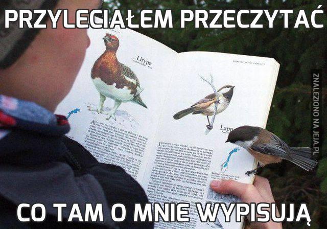 Przyleciałem przeczytać