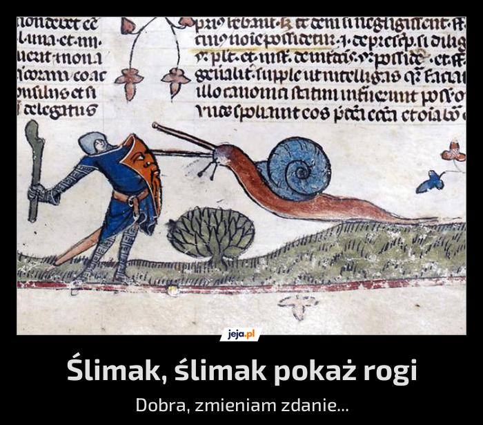 Średniowieczne ślimaki robiły wrażenie