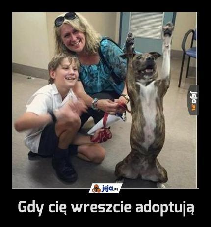Gdy cię wreszcie adoptują