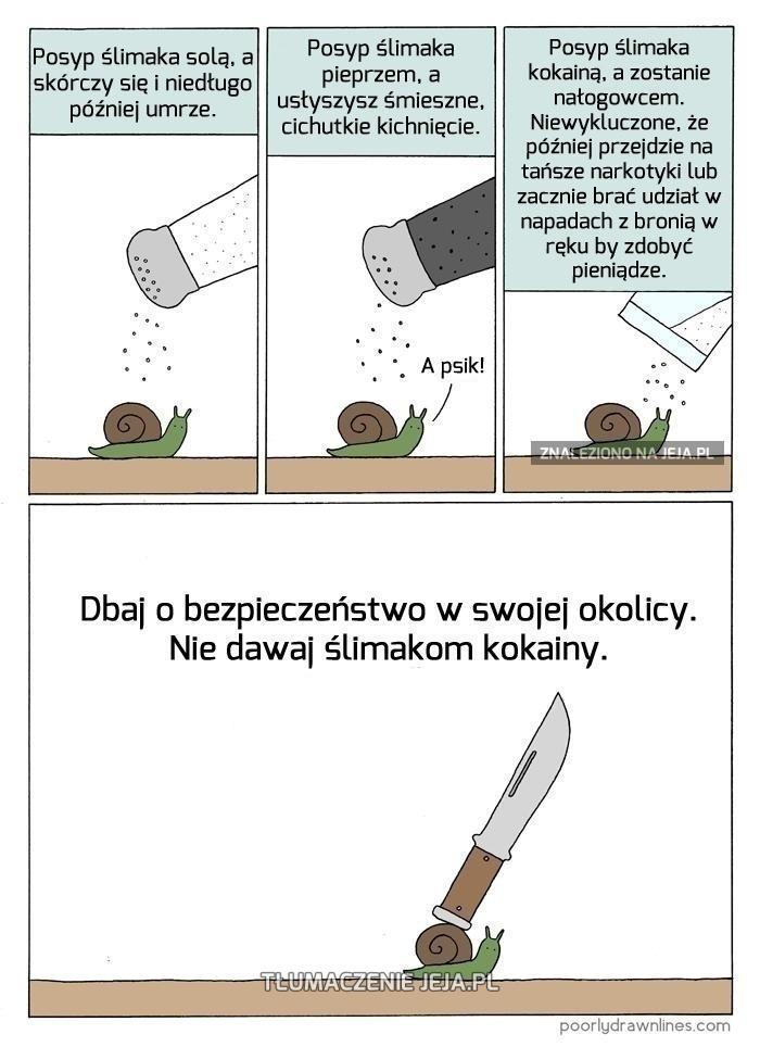Nie dawaj ślimakom kokainy!