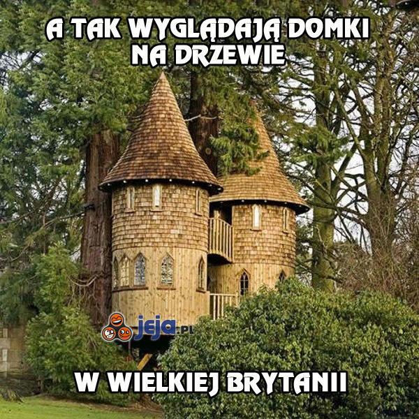 Angielskie domki na drzewie