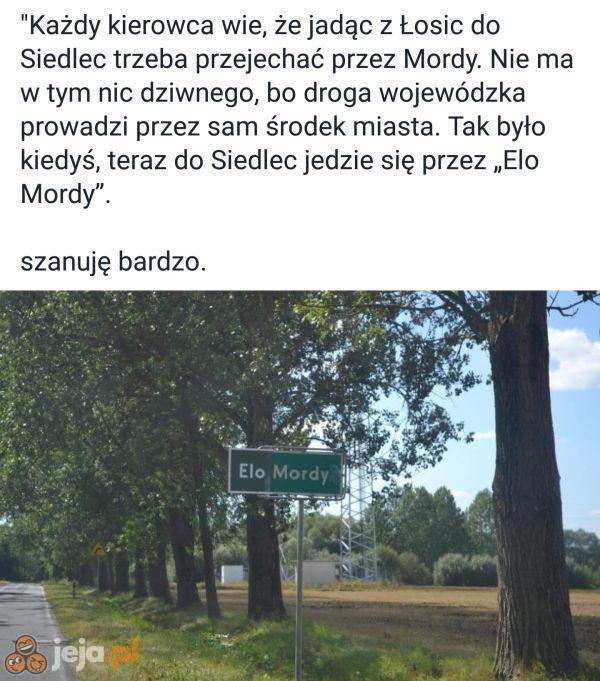 Elo Mordy