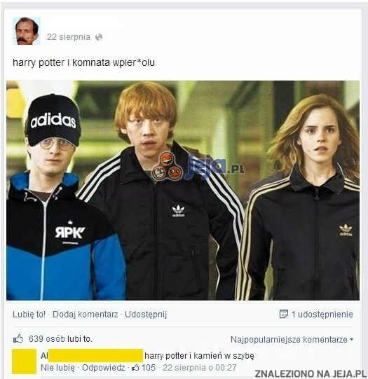 Trochę inny Harry Potter