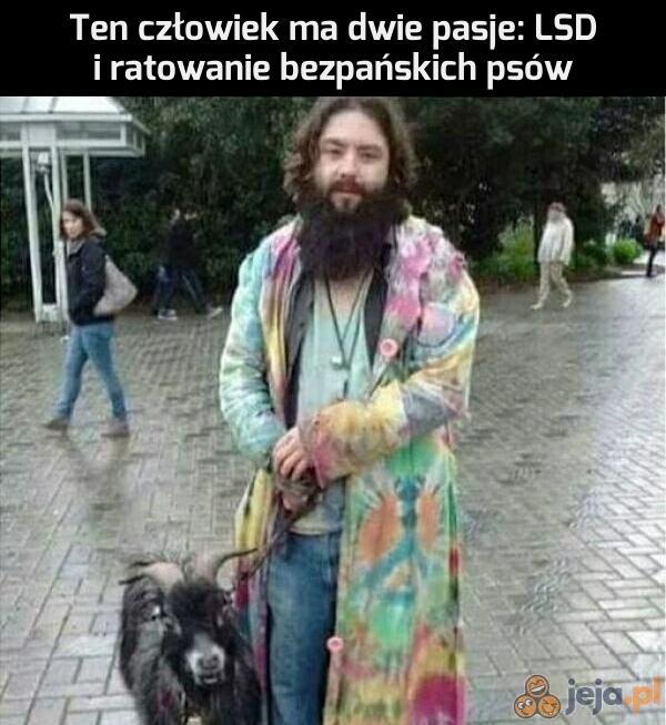 Jakiś dziwny ten pies