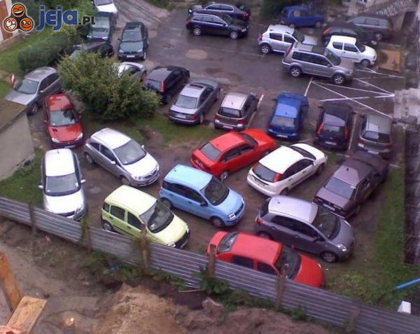 Kobiety parkują...