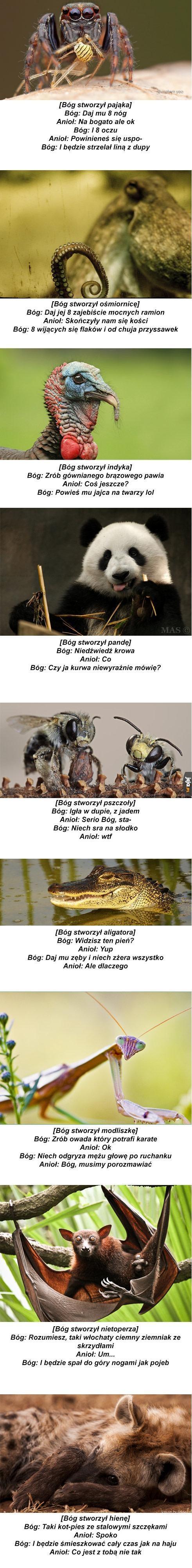 Prawdziwa historia stworzenia świata