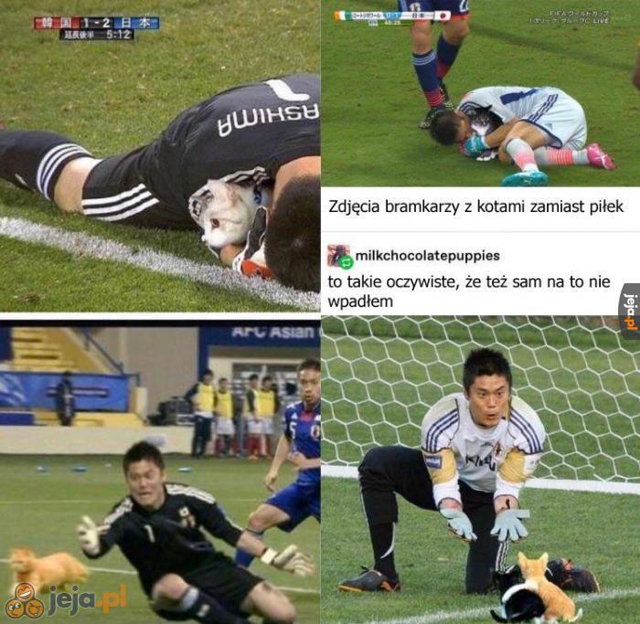 Piłkarze łapiący kotki