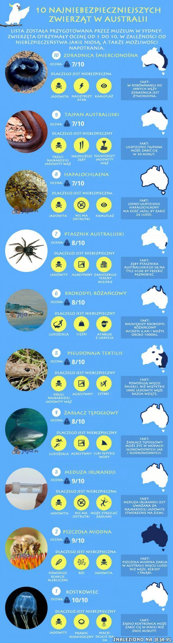 W Australii wszystko może Cię zabić