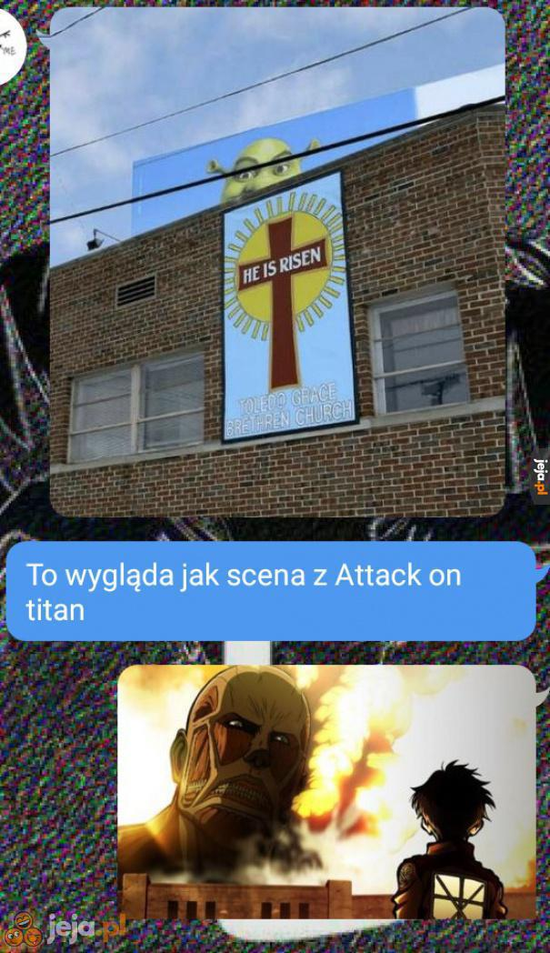 Zielony Tytan