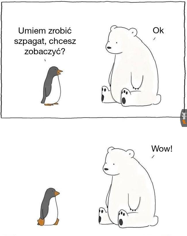 Pingwin guma