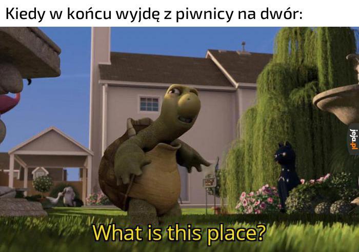 Co to za miejsce?