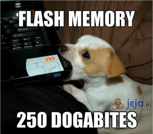 Pamięć fizyczna - 250 Psobajtów