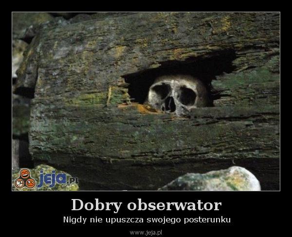 Dobry obserwator