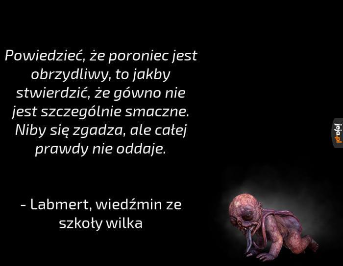 Wiedźmińskie cytaty