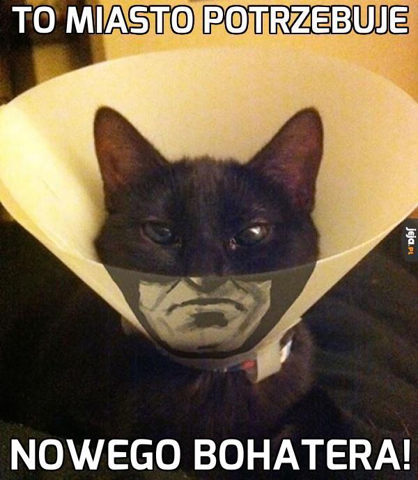Na na na Catman!