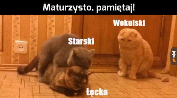 Jak Wam poszło na polskim?