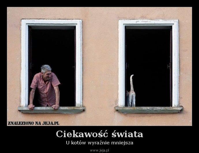 Ciekawość świata