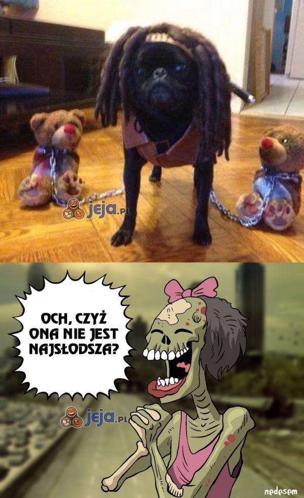 Słodziutka psinka!