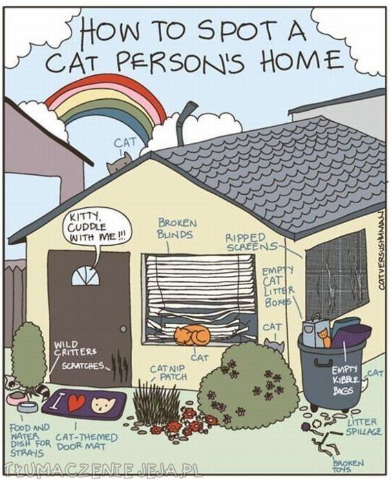 Jak rozpoznać dom, w którym jest kot