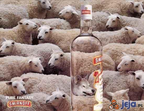 Smirnoff  - owce