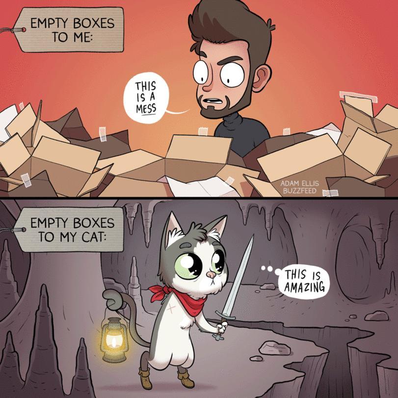 Sterta pudeł dla mnie vs sterta pudeł dla mojego kota