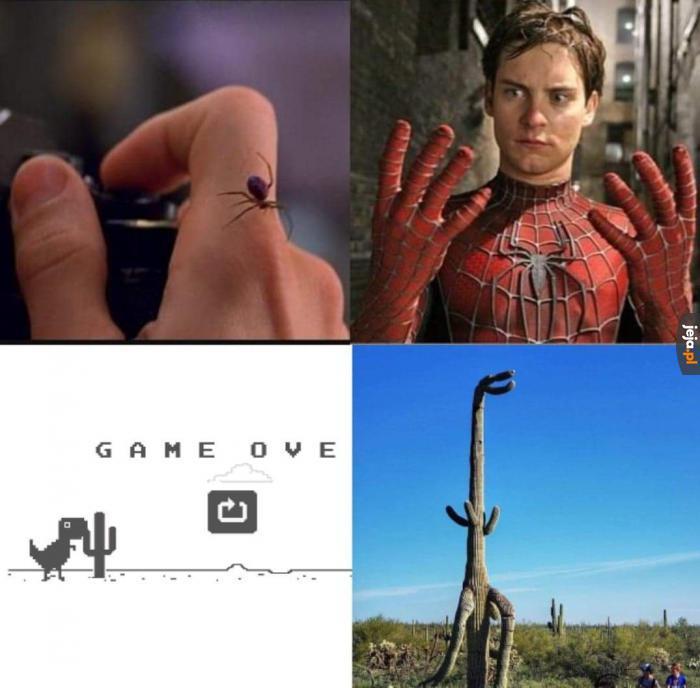 Dino kaktus atakuje!