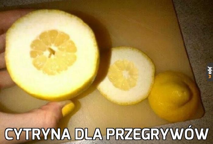 Cytryna dla przegrywów