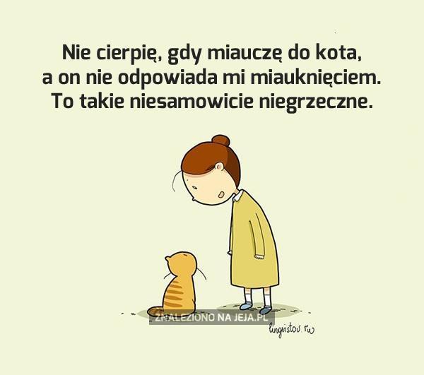 Koty są nieeleganckie