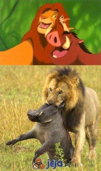 Król lew - Oczekiwania vs rzeczywistość