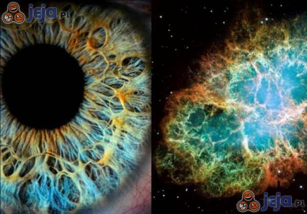 Oko vs kosmos