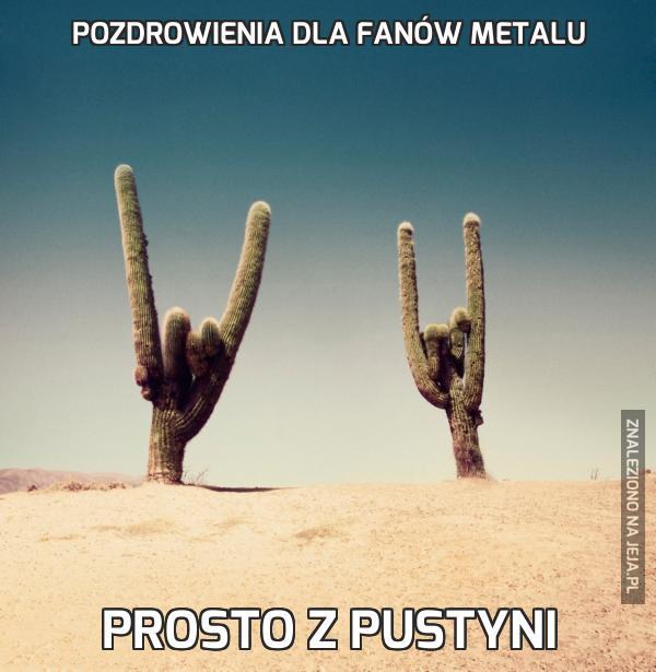 Pozdrowienia dla fanów metalu