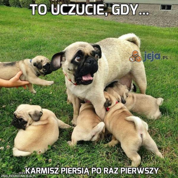 To uczucie, gdy...