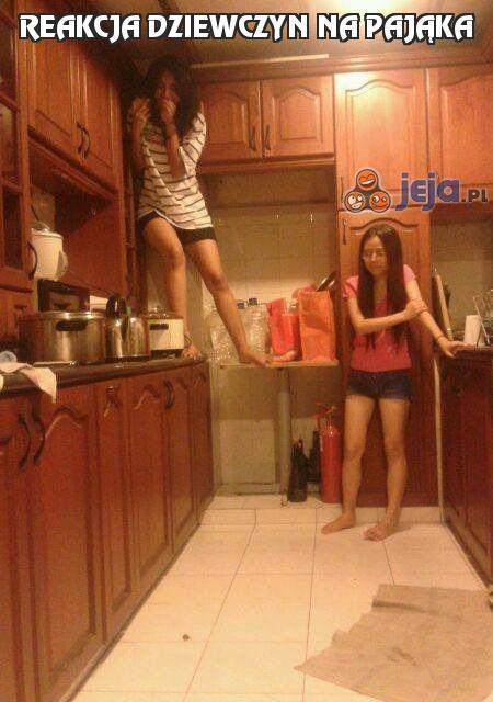 Reakcja dziewczyn na pająka