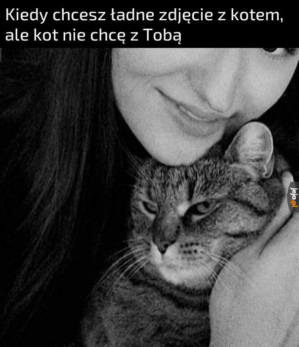Uśmiech kocie