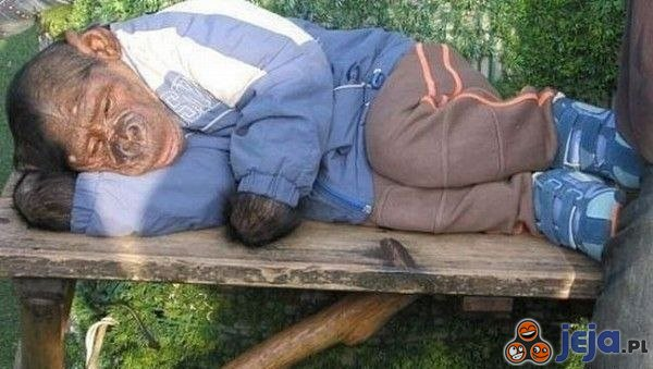 Śpiącą małpka