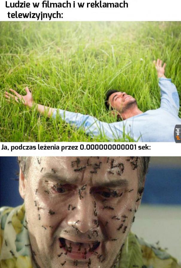 Leżenie na trawie jest niemożliwe