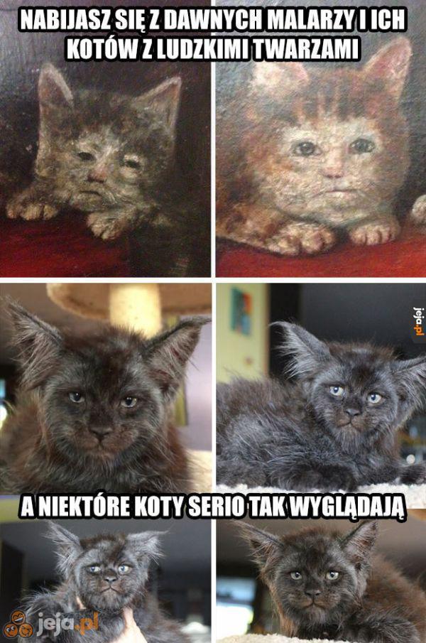 Nie dyskryminuj więcej kotów z ludzkimi twarzami