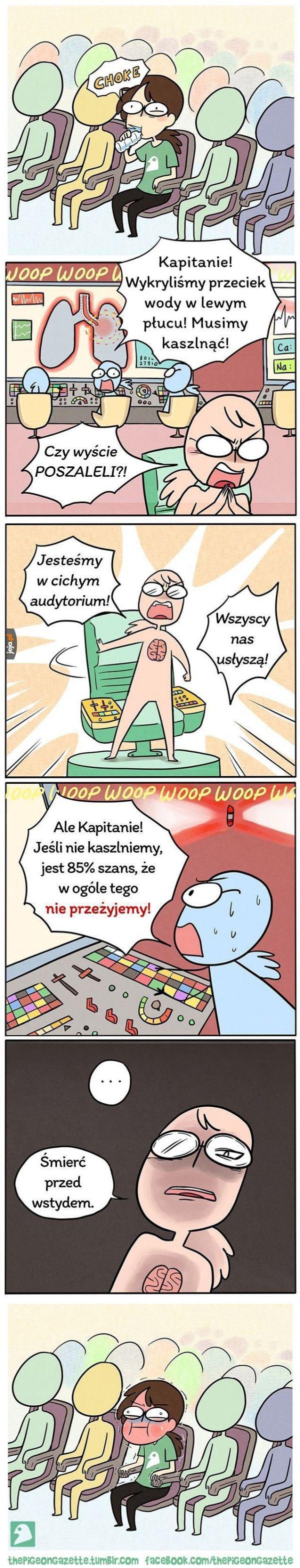 Kaszel