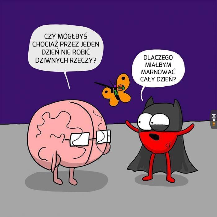 Mózgu, weź się ogarnij, co?!